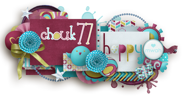 CT Chouk77 Index du Forum