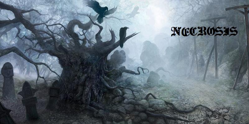 La guilde Necrosis Index du Forum