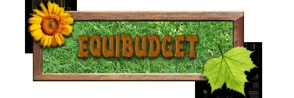 Equibudget Index du Forum