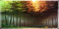 Forêt Müutu